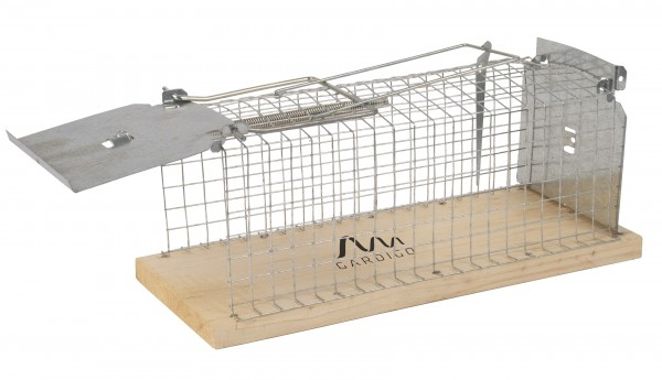 Ratten-Lebendfalle, Käfig mit Holzboden